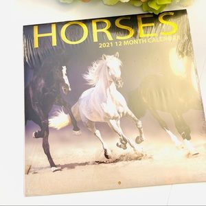 Horses photo equestrian 2021 wall Calander new